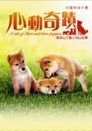 心動奇蹟:瑪莉與三隻小狗的故事(珍藏明信片書)