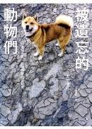 被遺忘的動物們:日本福島第一核電廠警戒區紀實
