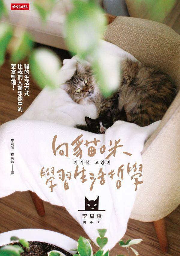 向貓咪學習生活哲學