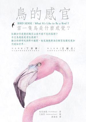 鳥的感官:當一隻鳥是什麼感覺?
