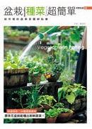 盆栽種菜超簡單