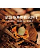 認識臺灣橡實家族:秋季橡實簡介、了解橡實使命、顯微觀察