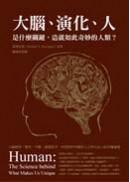 大腦、演化、人:是什麼關鍵,造就如此奇妙的人類?