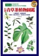 台灣青草茶植物圖鑑(全新美耐版)
