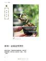 迷你盆栽習作:掌上天地寬,縮擬於豆缽中的四季風景 2017年暢銷改版