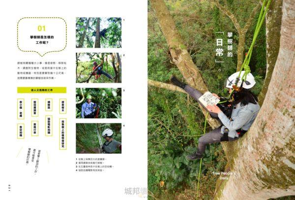 樹上看見的世界:攀樹人與老樹、巨木的空中相遇