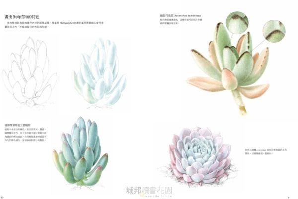 植物畫的第一堂課:英國皇家植物園首席畫師教你畫