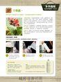 花草遊戲No.62:常見病蟲害!從選購到治療詳細全圖解