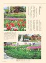 花草遊戲NO.70:嚐一口天然芬芳滋味!花草葉果做料理