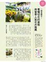 花草遊戲No.74:居家變森林!清淨空氣健康身心的觀葉植物
