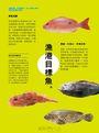 小心中魚!搞懂原理、智取魚兒,突破手足無措的新手期,釣魚別再只是靠運氣