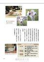 幸福的老犬生活 讓專業寵物保母告訴你照料、看護的新常識!