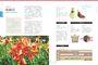 球根花卉超好種:園藝世家四代栽培密技大公開,50種球根花卉四季管理‧Q&A種花問答
