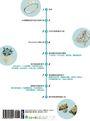 3D珠寶設計:現代設計師一定要會的RhinoGold飾品創作與3D繪製列印