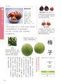 蔬果好選食:蔬菜水果這樣吃就對了,挑鮮/保存/切洗/料理,史上收錄數 No.1 的蔬果百科