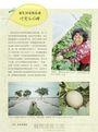 台南有意思:阿春爸的秘藏景點,走訪山野、村落、老城區,找尋街角故事╳巷弄美食