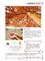 香港親子遊:主題樂園 X美食購物 X 交通路線,200+樂遊景點全攻略