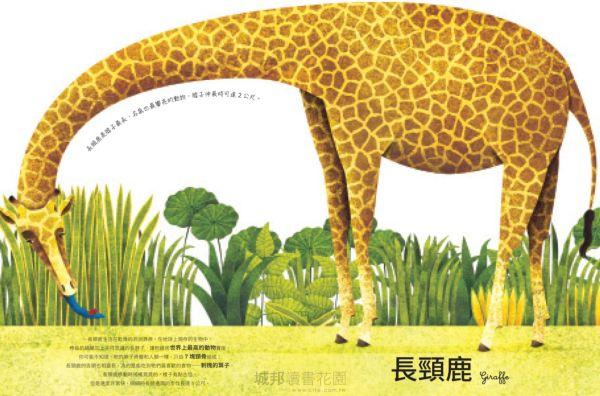 世界上最大的動物超級大書 + 世界上最小的動物迷你小書