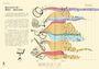 比例尺畫的世界史:100張收藏億萬年人類與地球故事的視覺資訊圖(絕美精裝版)