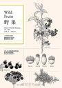 野果:183種果實踏查,梭羅用最後十年光陰獻給野果的小情歌
