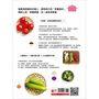 「冰箱常備食材」料理百科:40種萬用百搭好食材指南, 200道便當菜、家常菜輕鬆上桌