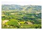 真食義大利:土地、餐桌與人情的一瞬相遇