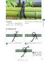 圖解日式竹圍籬:感受精緻工藝,解讀匠心美學,一次學會14種經典竹圍籬樣式