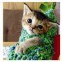 謝謝妳!哇莎比醬!我和貓咪的87天奮鬥日記【隨書附贈珍藏書盒】