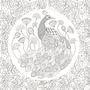 忘憂森林:英國威爾斯大自然療癒著色畫【附贈12色木紋質感隨身彩色鉛筆組】