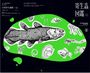 寄生蟲圖鑑:不可思議世界裡的居民們