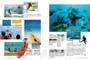 玩島嶼:蘇梅島.長灘島.帛琉.大溪地.關島.石垣島.蘭卡威.美娜多