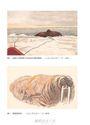 極北之旅:維京末裔挪威探險家南森極地遠征實錄