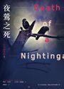 行李箱男孩3:夜鶯之死