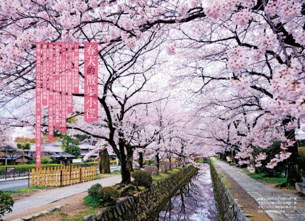 最美的京都,你都見過了嗎?攝影名家的私房散策路線:春櫻夏水篇