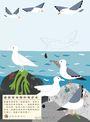 【我的自然遊樂園3】發現淺灘生物的祕密
