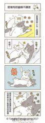 我家的貓又在幹怪事了。(3)