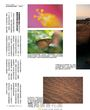 Nikon D5200數位單眼相機完全解析