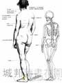 藝用人體素描技法