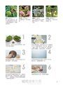 快樂的植物染: 26種植物、8種染法複合5種材質 ,染出迷人自然色彩!