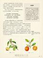 改變歷史的50種植物