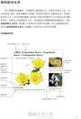 植物學百科圖典2015全新修訂版