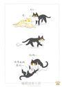 貓貓五四三