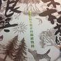 狼與森林的教科書:挽救崩毀生態系的關鍵物種