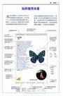 台灣蝴蝶圖鑑(全新美耐版)