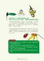 台灣原生植物全圖鑑第一卷:蘇鐵科——蘭科(雙袋蘭屬)